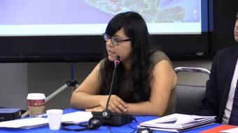 Acusación ante CDIH: La destrucción al patrimonio biocultural en México es consentida y promovida por el Estado mexicano