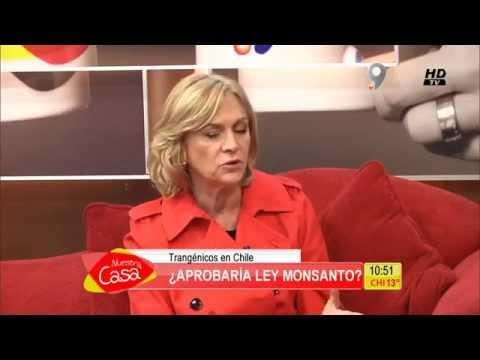 Entrevista a Evelyn Matthey donde le preguntan sobre ley Monsanto o de Obtentores