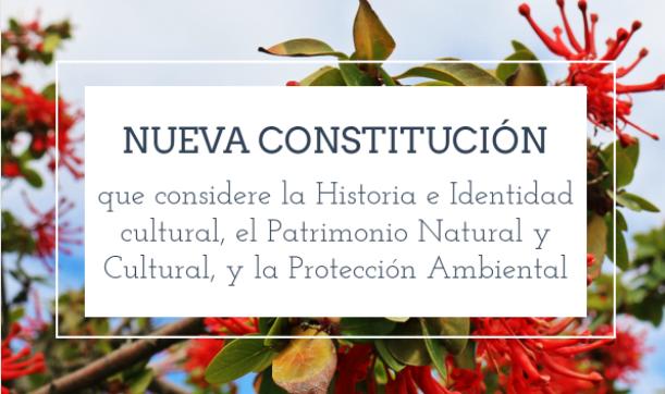 """Hernán Narbona habla sobre """"La Cultura en la Nueva Constitución"""""""