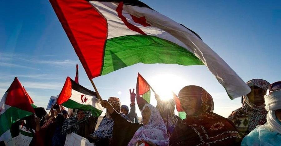 Marcha a pie desde Uesca hasta Madrid por la libertad del Pueblo Saharaui