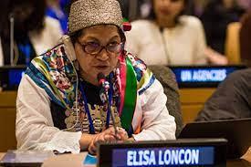 Elisa Loncon habla en momentos que se ha postergado la inauguración de la Convención Constituyente