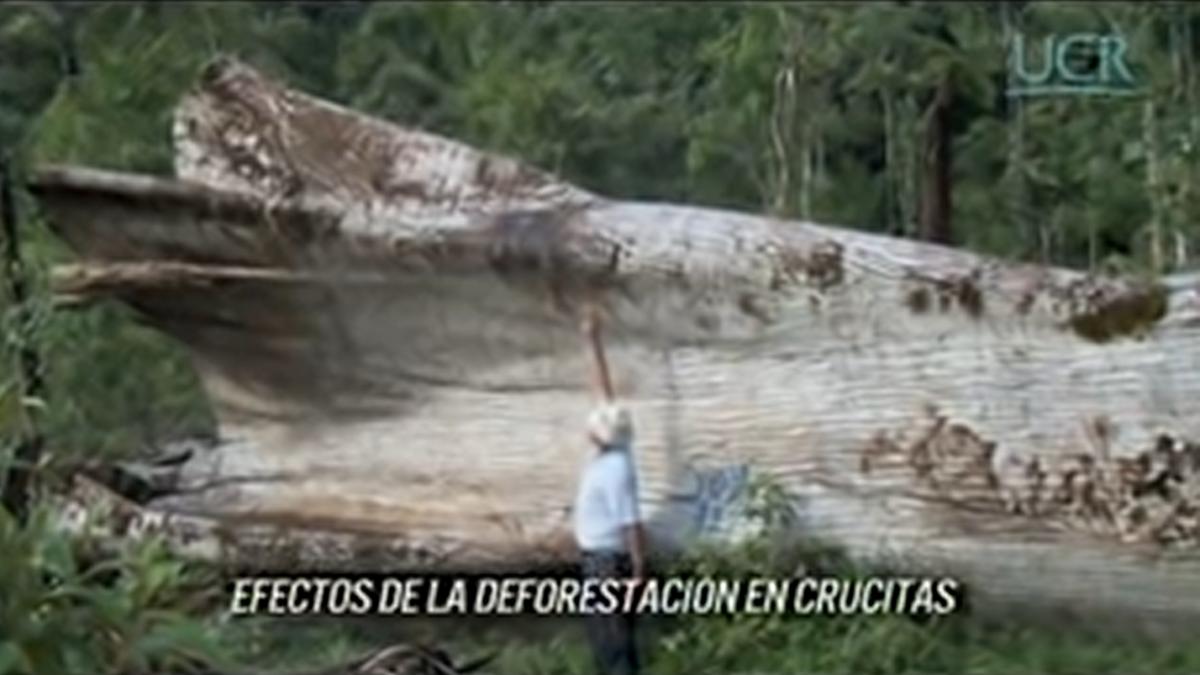 Costa Rica: Breve análisis del laudo arbitral del CIADI por la suspensión de proyecto aurífero canadiense en Las Crucitas