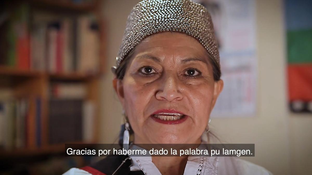 Elisa Loncón acerca de que tendría desconocidos y estrechos lazos con el PPD: «Un ataque desafortunado, mal intencionado y cobarde»