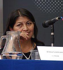 Elisa Loncón, algunos datos sobre su biografía