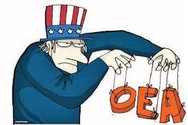 ¿Un adiós a la OEA?