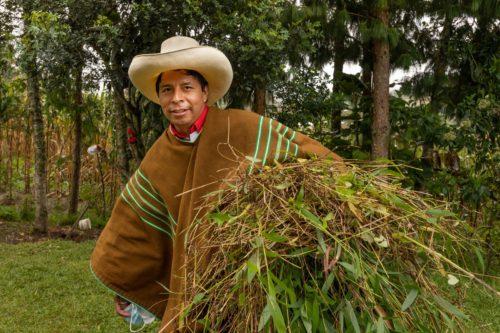 Perú. «Los que nacieron para ser sirvientes, ahora gobiernan el país»